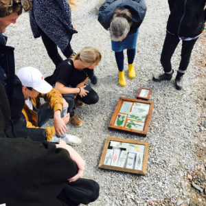 Cyanotype Workshops at Agrikultura