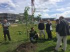 Tree of 40 Fruit Grafting Workshop